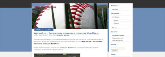 WordPress о баскетболе