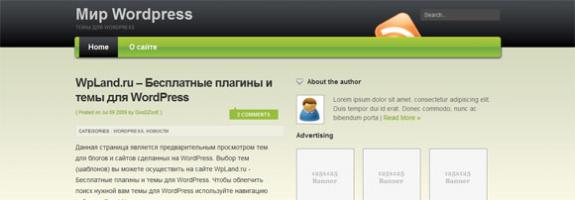 Премиум WordPress