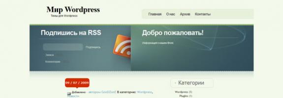Информационный блог на Wordrpess
