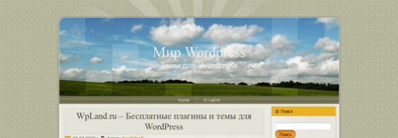 Поле WordPress