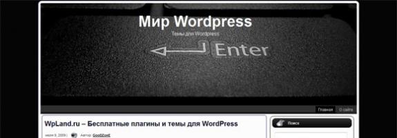 Блоговый шаблон wordpress: Enter Button